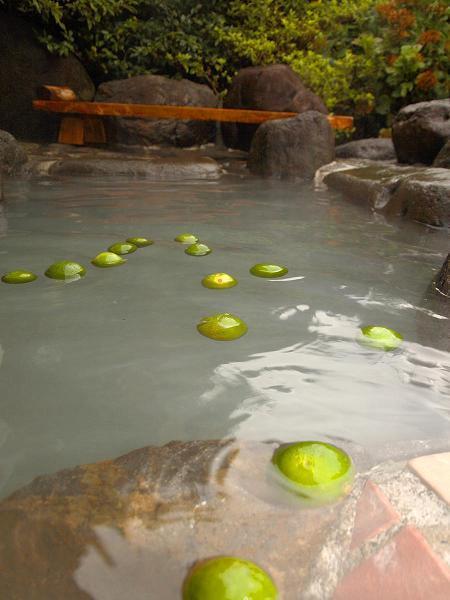 まだ青いニューサマーオレンジや甘夏のミカン風呂