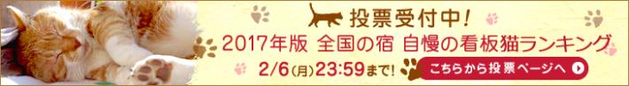 楽天トラベル 看板猫ランキング2017